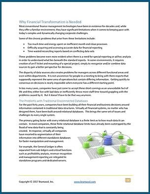 Bramasol-eBook---CFOs-Guide-to-Financial-Transformation_thumbnail.jpg