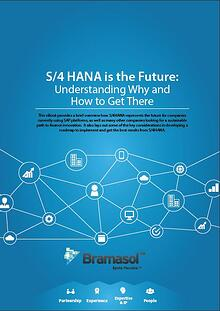 S4HANA is the Future
