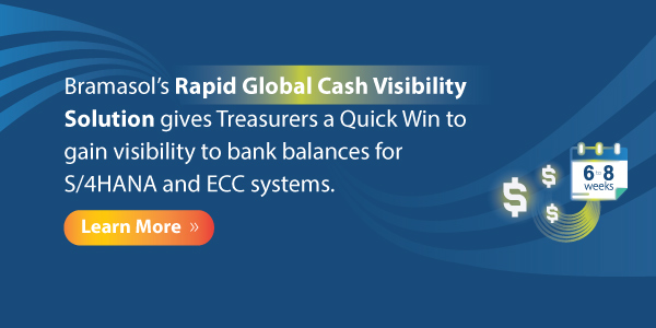 banner-Rapid-Global-Cash-Visibility-Solution-600x300