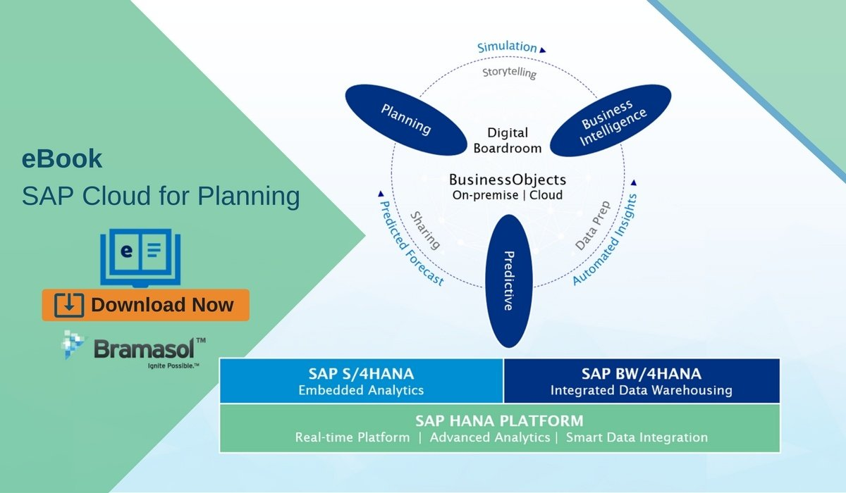 eBook SAP Cloud for Planning.jpg